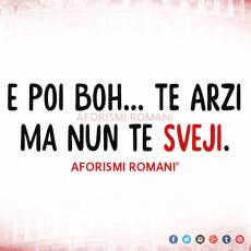 aforismi-romani-pigrizia-5
