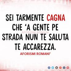 aforismi-romani-felicita-122